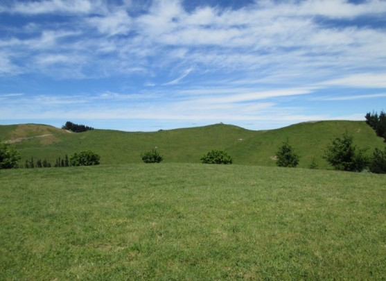 39 Degrees South Swamp Road, Lifestyle Sections, Puketapu